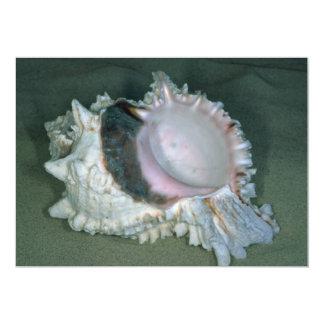 Pink murex (Murex erythrostomus) Shell 5x7 Paper Invitation Card