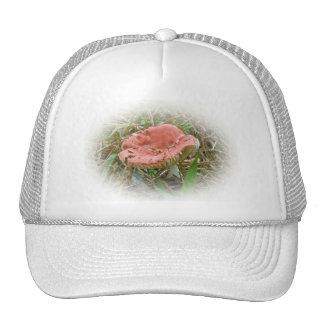 Pink Mushroom Coordinated Items Trucker Hat
