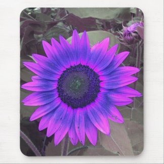 Pink N purple Sunflower mouse pad