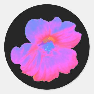 Pink Nasturtium Sticker