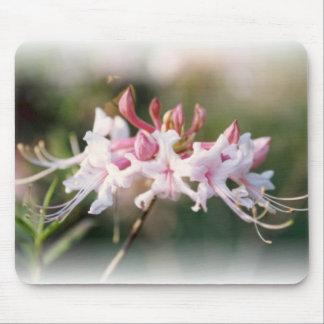 Pink Native Azalea Mousepad