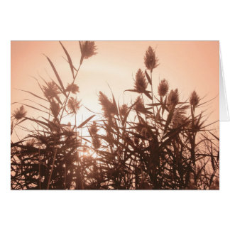 Pink Nature notecard Stationery Note Card