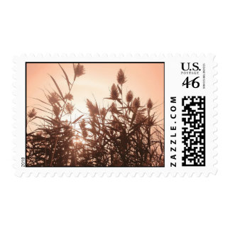 Pink Nature stamps