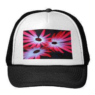 Pink neon daisy cap