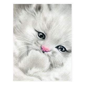 pink nose white fluffy kitty postcard