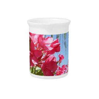 Pink Oleander Pitcher