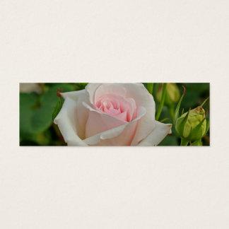 Pink Ophelia Hybrid Rose Mini Business Card
