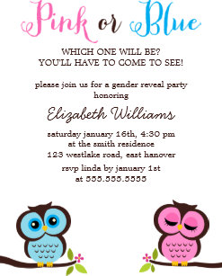 Pink Or Blue Owls Gender Reveal Party Invitation