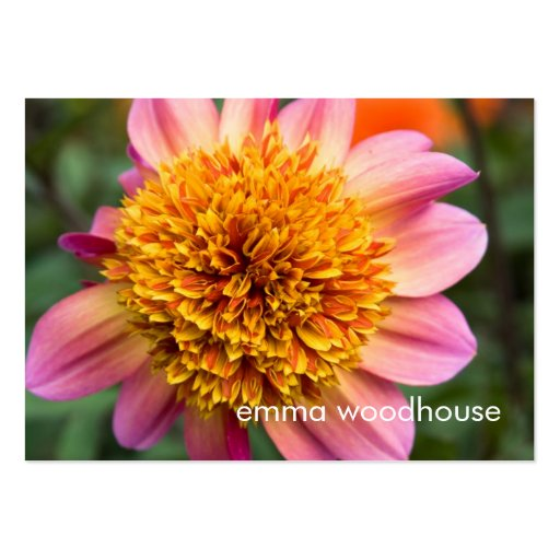 Pink & Orange Filled Dahlia DSC4625 Business Card
