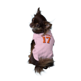 Pink & Orange Pets | Sports Jersey Design Shirt