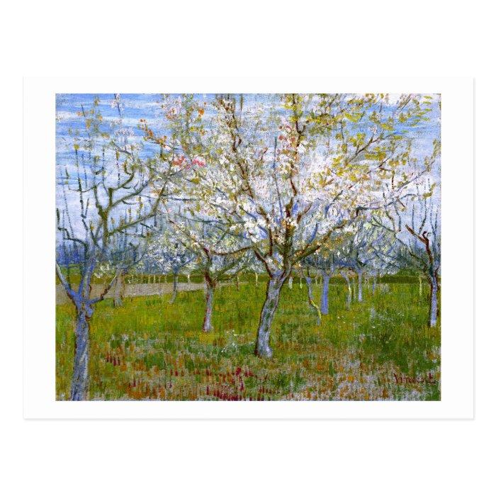 Pink Orchard (F555) Van Gogh Fine Art Postcard