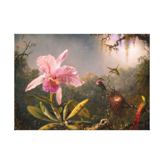 Pink Orchid and Three Hummingbirds Stretched Canvas Print