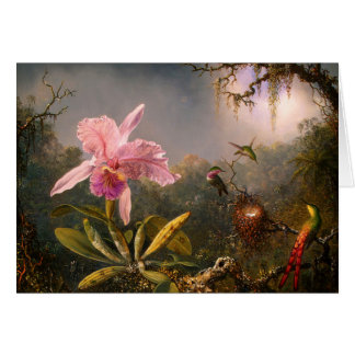 Pink Orchid and Three Hummingbirds Greeting Card