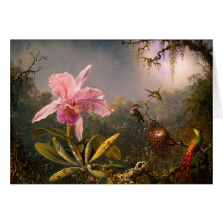 Pink Orchid and Three Hummingbirds Note Card