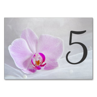 Pink Orchid and Veil Wedding Table Numbers Table Cards
