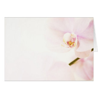 Pink Orchid Background greeting card