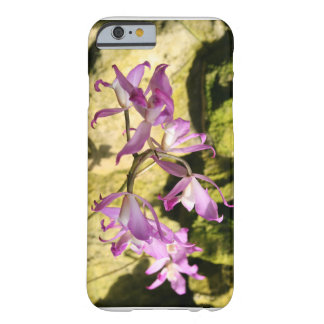 pink orchid barely there iPhone 6 case