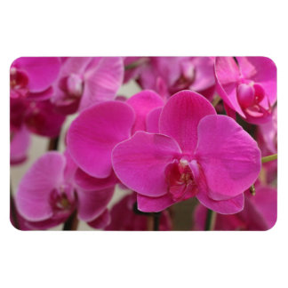 Pink Orchid blooms Flexible Magnet