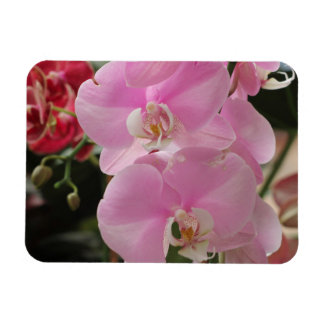 Pink Orchid blooms Rectangular Magnet