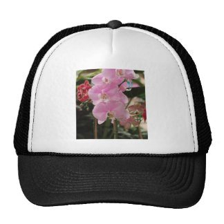 Pink Orchid blooms Trucker Hat