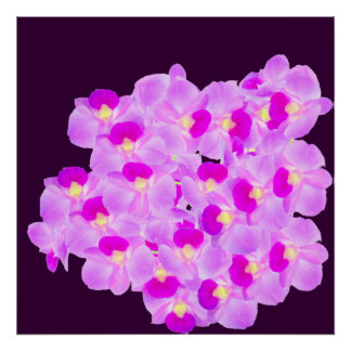 Pink Orchid Bouquet Poster