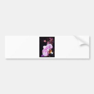 Pink orchid bumper sticker