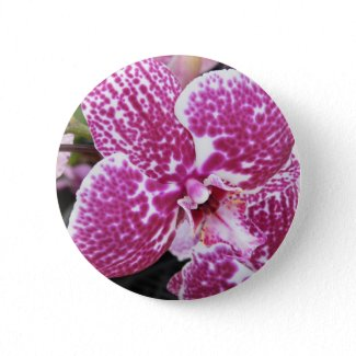 Pink Orchid Button button