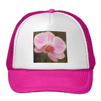 Pink Orchid Fashion Trucker Hat