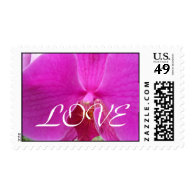 pink orchid flower LOVE wedding stamps Stamps