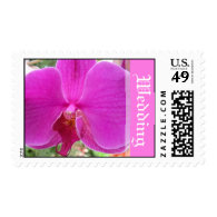 pink orchid flower wedding stamps stamp