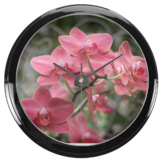 Pink Orchid flowers Aquavista Clocks