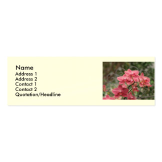 Pink Orchid flowers Business Cards