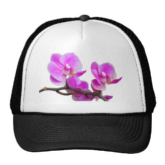 Pink Orchid Flowers Cap Trucker Hat