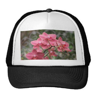 Pink Orchid flowers Trucker Hat