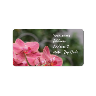 Pink Orchid flowers Label