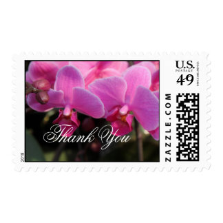 pink orchid flowers  thank you stamps