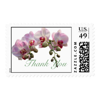 pink orchid flowers thank you  stamps.. postage