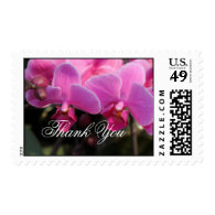 pink orchid flowers  thank you stamps stamps