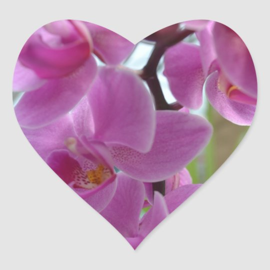 Pink Orchid Hearts Heart Sticker