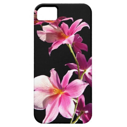 Pink Orchid. iPhone 5 Cases