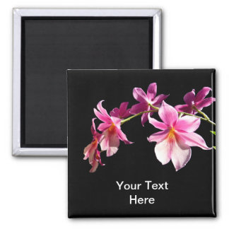 Pink Orchid. Fridge Magnet