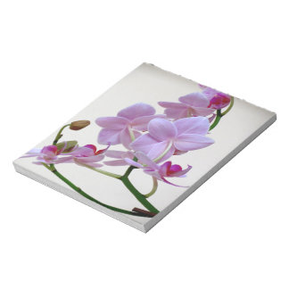 Pink Orchid Memo Notepad