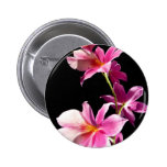 Pink Orchid. Pinback Button
