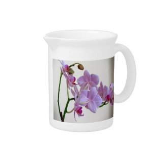 Pink Orchid Pitcher