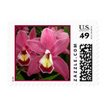 Pink Orchid Postage