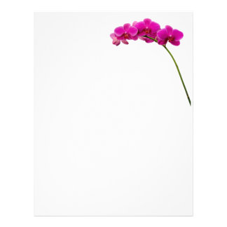 Pink Orchid Stationary Letterhead Design