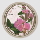 pink orchids 1 gift tags round stickers