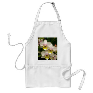 Pink Orchids Apron