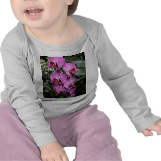 Pink Orchids Baby Shirt