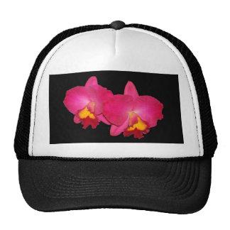 Pink orchids, black trucker cap trucker hat